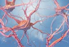 脑部神经胶质瘤手术治疗后能活多久?