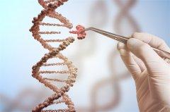 2021年脑胶质瘤的治疗进展